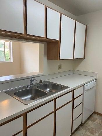LB123 kitchen2