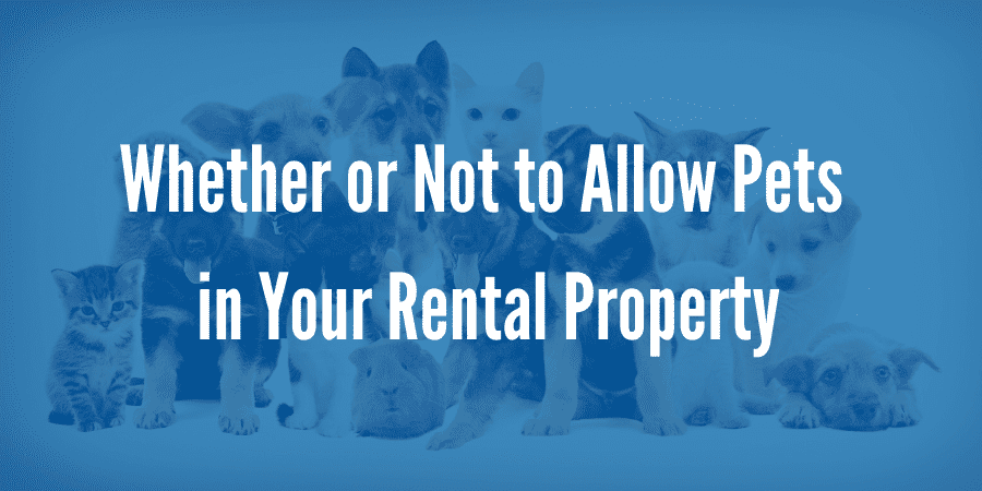 Pet Renting: Deciding Whether or Not to Allow Pets in Your Seattle Rental